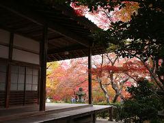 嵐山紅葉散策 2    KYOTO - Arashiyama area
