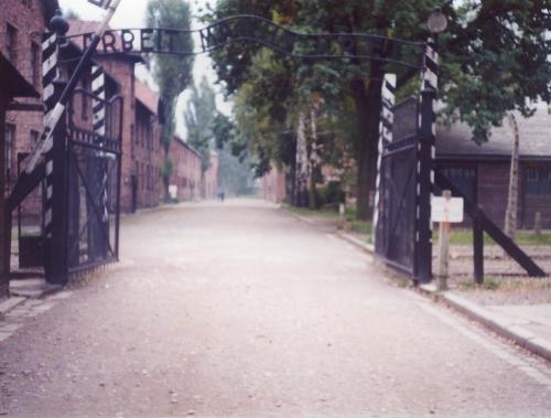 虐殺の地、アウシュビッツ・ビルケナウ(ユダヤ人、ポーランド) <br /> ハインリッヒ・ヒムラ―の指示により1940年5月20日に初代所長ルドルフ・ヘス(戦後処刑される)で開所。1940年10月には第2収容所としてのビルケナウが開所。1943年5月には死の天使ヨーゼフ・メンゲレ(同じく南米に逃れたアイヒマンと対照的にブラジルで海水浴中に死亡した)が着任。1944年夏と秋に空爆が検討されるも実施されず、1945年1月27日にソ連軍によって解放。1979年にはユネスコの世界遺産に登録された。<br /><br /><br />(このページを訪問してくださった方へ)<br /> ご訪問有難うございます。<br /> もし読者の方が根本的間違い、編集の際に発生したと思われる不整合、文法上の誤りなどを発見されたり、何か目新しい情報をお持ちの方、ご意見がおありの場合は、ご遠慮なく掲示板でもメールでも、ご一報くだされば幸いです。<br /><br /> 心からの感謝を込めて                          砂布巾