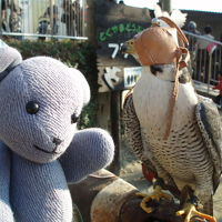 徳山動物園で遊ぶ
