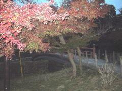 旅記録日帰り編2007 大阪・奈良〔03−竜田編〕