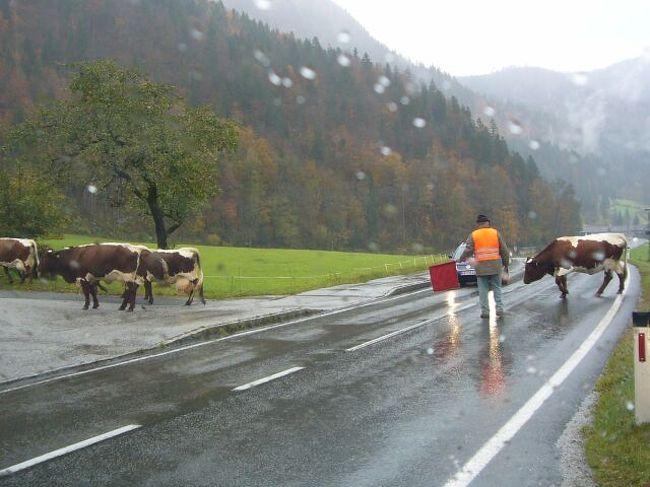 19日雨<br />ドイツ・カーニクセ:<br />オーストリアのカプルンを出発してヒットラーの山荘(ケールシュタインハウス)に出かけることにしましたた。ドイツ入国はパスポートの提示もなく国境を通過するという感じはしなかった。