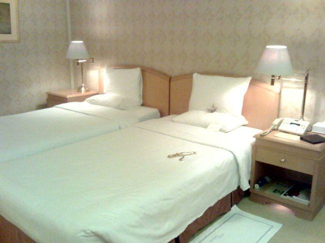 往 路:JL106(先得J)<br />復 路:JL139(回数券F)<br />ホテル:ホテルオークラ東京 <br />    別館9階(1室2名利用)11,650円<br />プール:1,050円<br />朝 食:2,800円<br />費 用:約5万円<br /><br />デジカメ忘れてしまいました。