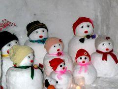 雪の東北巡り【24】身体の芯まで凍る奥羽山脈の地吹雪