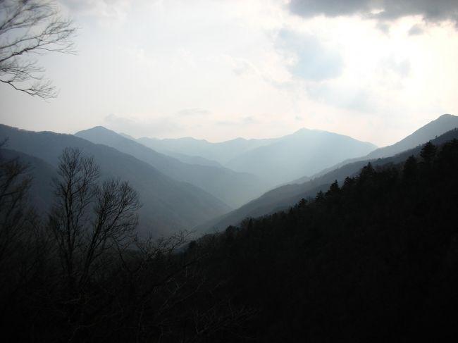 私が大好きな風景。<br /><br />祖父の故郷・徳島へはじめて足を踏み入れました。<br /><br />レンタカーを借りてのひとりたび。<br /><br />4月上旬は関東と比べてまだ少し寒く、桜がちょうど見ごろを迎えていました。<br /><br />大好きになった祖耶へまた行きたいな。