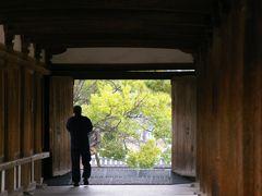 雨の斑鳩 法隆寺