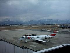 山形空港の景色