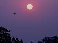 2008冬、インド旅行記(17):1月27日(9)アグラ、タージ・マハル廟、夕陽の光景