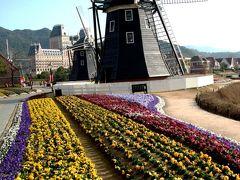 森の家-3 オランダ風車のある花畑 ☆三色スミレのパレード