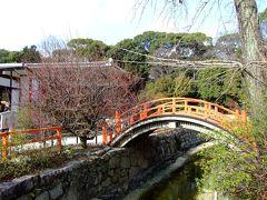 日帰り京都散策。下鴨神社&京都御苑