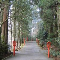 「水の音」さん宿泊と「箱根神社」詣での一人旅