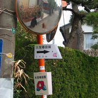 湘南散歩 雄三通りから 氷室椿庭園へ