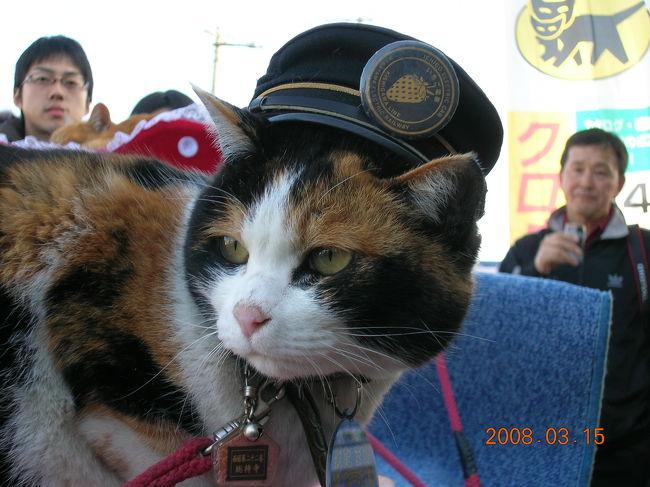 和歌山県に猫の駅長がいるとゆうので会いに行ってきました。<br /><br />貴志川線は廃線の危機にあったのですが、南海鉄道から両備グループのわかやま電鉄に引き継がれ、地元の方の存続運動や募金などの結果2006年4月1日に運営を再開しました。そして2007年1月5日に日本初の猫の「たま駅長」が誕生し、招き猫パワーを発揮してお客さんを呼び戻しつつあるようです。<br /><br />