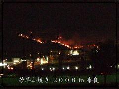 *奈良県 【若草山・山焼き】 2008*