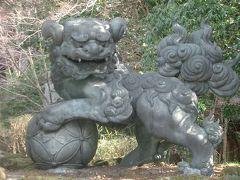 箱根神社の荘厳さも特別。