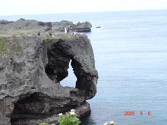 沖縄で観光&バードウオッチング [2005](1)