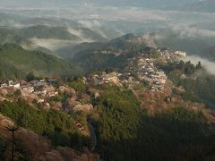 さくらの国の桜の名所 吉野山を歩いて。