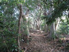 近場の穴場−都市近郊にある原生林