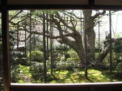 奈良・京都の旅 8  大原など。。。