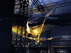 【ちょっとお出掛け】世界最大の翼竜展に行ってみた。