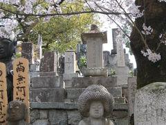 奈良・京都の旅  9  最終日は金戒光明寺辺りでゆったりと