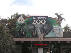 サンディエゴで年末年始の休暇を満喫(2)サンディエゴ動物園