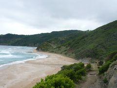 グレートオーシャンロード(ビクトリア州・西海岸)・トレッキング 3 - Johanna Beach to Ryans Den (片道コース)