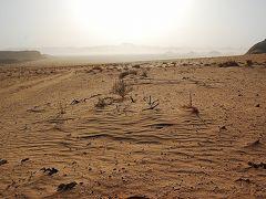 2008 ヨルダンの旅 (4) ~ワディ・ラムで砂漠ステイ