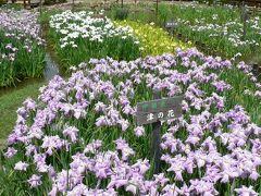 日本の旅 関西を歩く 大阪・山田池公園の花菖蒲園(はなしょうぶえん)とあじさい園