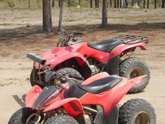 オーストラリア【22】(ケアンズ3日目)「1日ATVバギー&乗馬」と「スーパー4WDハマーナイトサファリ」