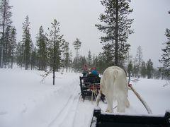 オーロラに会いたくて(会えなくて・・・)☆2007年フィンランドへの旅・サーリセルカ編