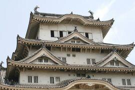 2008夏、世界遺産の姫路城(5:完):7月12日(5):榎古樹、大天守、和釘、歴代城主、籠城設備、お菊井