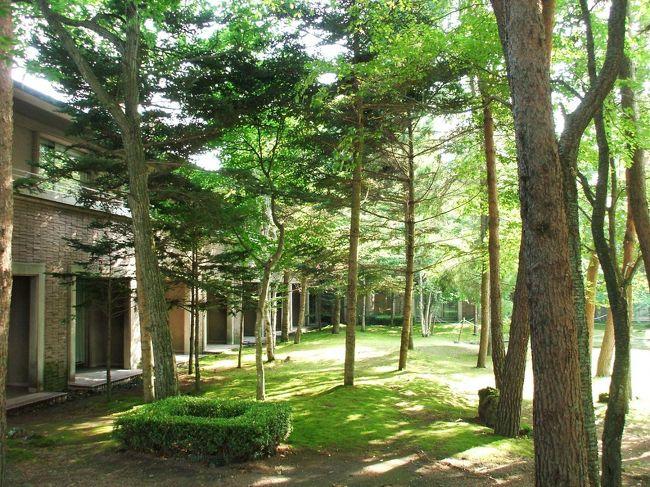 7月下旬にエクシブ軽井沢に1泊してきた。軽井沢と言えども昼間は結構暑い。しかし、朝、夕は一気に気温が下がり避暑地としての真価が発揮される。<br /><br />私のホームページ『第二の人生を豊かに―ライター舟橋栄二のホームページ―』に旅行記多数あり。<br />http://www.e-funahashi.jp/<br /><br />