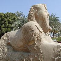 エジプト旅行記?(メンフィス)