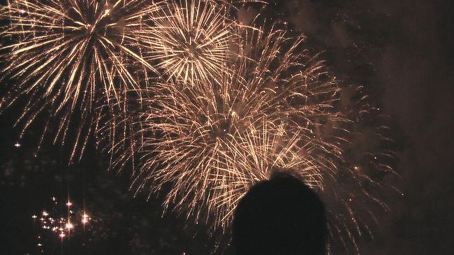 今年も 又 桟敷席を購入して仲間で江戸川花火大会を堪能しました。<br />今年は 千葉県で行なわれる WHO健康都市連合国際大会開催記念ということで 心なしか昨年より花火の内容が更に進歩した感がありました。<br />現地には 6時位には到着し、仲間が集まるのを待っている間に 夕闇が迫り 7時15分打ち上げ開始。<br />やはり 光と音の迫力は写真からはうかがうことも出来ませんが、ちょっとの雰囲気を感じれれば(というか 見た人が思い出せれば)と思います。<br />又 来年も行きます。。。<br />