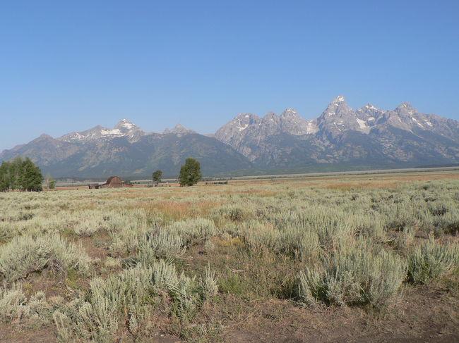 2008年夏はグランド・ティトンとイエローストーンを旅してきました。グランド・ティトンは映画「シェーン」で、背景に映っていた美しい山。最後にシェーンが去っていく山です。山の横を走りながら、シェーンのテーマソング「遥かなる山の呼び声」がずっと頭の中で演奏されていました♪<br />http://ja.wikipedia.org/wiki/%E3%82%B7%E3%82%A7%E3%83%BC%E3%83%B3<br /><br /> ジャクソンで役立つサイトはツアーは<br />http://graylinejh.com/<br />宿泊は<br />http://www.jacksonholehotelguide.com/<br />http://www.gtlc.com/<br /><br /> それとウェスト・イエローストーン町の地図を作りました。<br />町内を少し紹介しますね。<br />宿泊の情報は<br />http://www.westyellowstonenet.com/<br />移動のための交通手段は<br />http://www.westyellowstonetraveler.com/planning/transpo.shtml<br />http://www.yellowstonetaxi.com/yellowstone_taxi_services.htm<br /><br /> 今回僕が参加したツアーです。<br />http://www.yellowstonevacations.com/tours/buffalobustours.htm<br />
