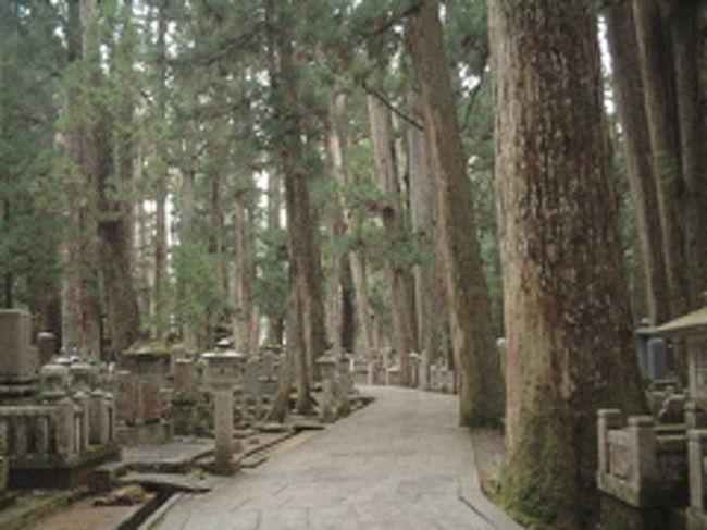 行ってみたかった高野山。<br />日本三大霊山の1つ。<br />雰囲気最高です。<br />宿坊にお泊まりして、朝のおつとめもしました。<br />