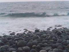 御蔵島で、いるか泳ぎ。