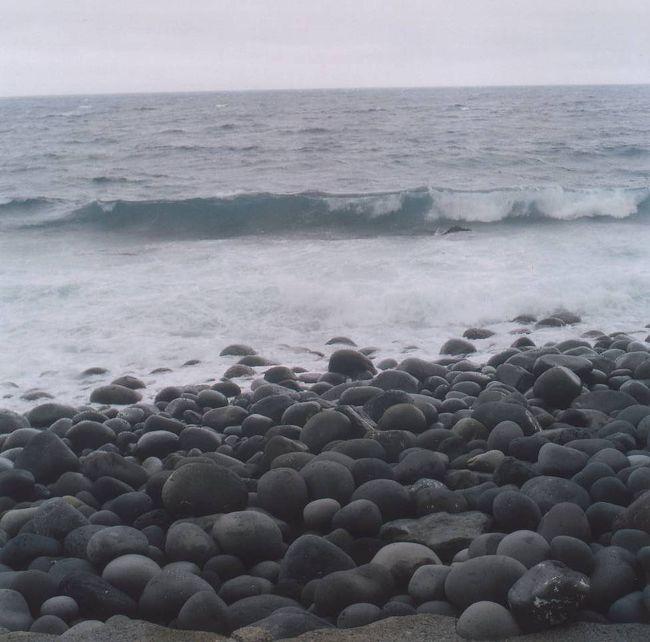 御蔵島(みくらじま)は、<br />都心から南へ約200kmの太平洋上に浮かぶ<br />伊豆諸島の島です。<br /><br />約160頭のミナミバンドウイルカが棲んでいます。<br />野生のイルカと泳げる場所で、<br />船さえ出港できれば90%以上の確率でイルカと泳げるのは<br />奇跡に近いらしい。<br /><br />そんな島が東京都にあるなんて。<br /><br />ただ、キャパシティが非常に少なく、<br />島には7軒の民宿とバンガロー5軒があるのみ、ということで<br />予約したのは6月末でした。<br /><br /><br />民宿と往復の東海汽船が予約できればあとは出発するのみです。<br /><br />3泊4日の御蔵島旅行、前半の記録です。<br /><br /><br />--------------------主な旅費---------------------<br />竹芝桟橋-御蔵島 2等椅子席/8月料金/学割 16640円<br />民宿一泊二食 7350円 ×2泊<br />ドルフィンスイム 6850円×2回<br />-------------------------------------------------