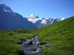 2008年スイス&イタリアで夏休み~(35)フィルストへのハイキング