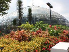 姫路市立 「手柄山 温室植物園」