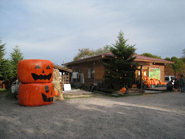 10月12日に愛犬ブルドッグキャンプが<br />北軽井沢のスウィートグラスで開催され、<br />関西から参加しました。<br /><br />11日〜13日、2泊3日<br />キャンプされてる方もいたのですが<br />私達はホテル?ペンションに愛犬と泊まりました。<br /><br />ハロウィンパーティー、ブルドッグ約50頭<br />飼い主、人間?人間じゃない人いっぱい(笑)<br /><br />初めての軽井沢の観光も少し出来ました♪<br /><br />ブルドッグキャンプもようの動画です♪<br />http://jp.youtube.com/watch?v=USagpKMCAuA<br />ビビコはピンクのカッパです☆