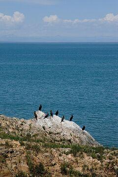 蛋島の野鳥観察施設
