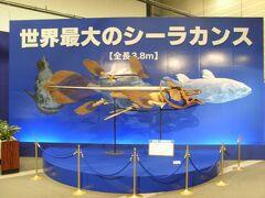 【ちょっとお出掛け】特別展示「Coelacanth」展に行ってみた。