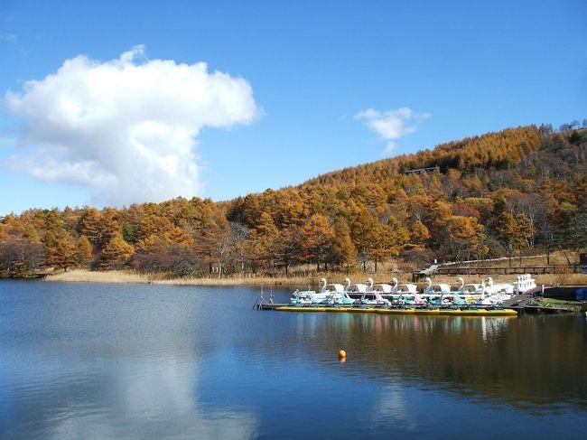 女神湖周辺はカラマツの森に囲まれており、10月中旬から下旬にかけて一斉に黄葉する。緑あふれる夏の女神湖もいいが、晩秋の女神湖はもっといい。もの悲しい湖畔を1人散歩をすると深い味わいが感じられる。熟年世代におすすめの散歩コース。<br />写真:晩秋の女神湖<br /><br />私のホームページ『第二の人生を豊かに―ライター舟橋栄二のホームページ―』に旅行記多数あり。<br />http://www.e-funahashi.jp/<br />