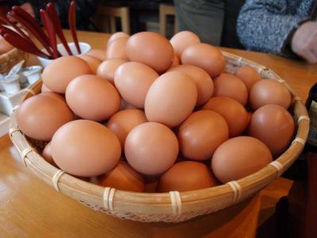 かけ 豊岡 ご飯 卵