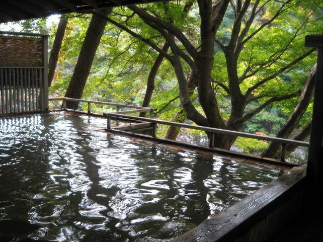 熟女6人で、紅葉を期待して、新城市の湯谷温泉に行ってきました。まだ、ちょっと早かったみたい。11月中旬〜下旬かな?