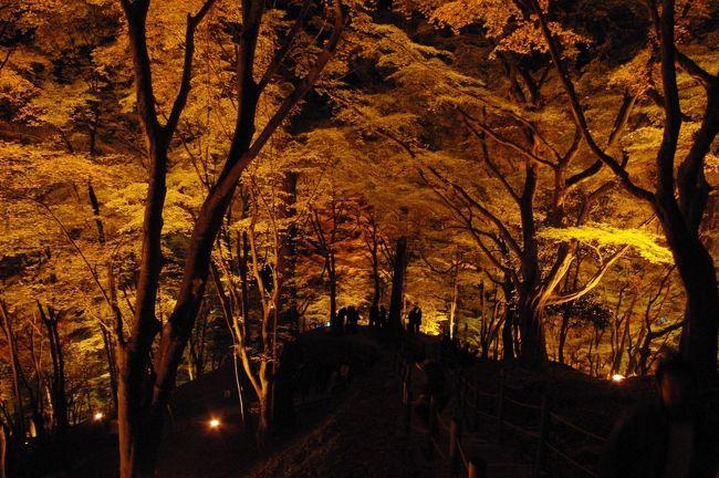 紅葉の香嵐渓に憧れ、JTB旅物語のバスツアー一泊二日で香嵐渓へ行きました。<br />一泊二日で15000円でした。<br />夕朝一食しかついていませんが、なかなかお得なツアーでした(ホテルもまずまず良かったです。)<br />香嵐渓(こうらんけい)は連休と紅葉の見ごろということでものすごい人と渋滞がありましたが、紅葉とそのライトアップが印象的でした。本当にに行ってよかったと思っています。<br /><br />行程は<br />一日目<br />新宿発 6:30発 東京発 7:15<br /> ↓<br />香嵐渓<br /> ↓<br />大矢田もみじ谷(香嵐渓の渋滞でカット9<br /> ↓<br />ホテルグランディア飛騨高山 到着は八時半頃<br /><br />二日目<br />ホテル 出発 7:50<br /> ↓<br />高山フリー散策<br /> ↓<br />舞台峠(ただのドライブイン)<br /> ↓<br />馬籠宿<br /> ↓<br />信州清内路村のお漬物屋さん<br /> ↓<br />天竜峡<br /> ↓<br />飯田・水引の郷(ただのドライブイン)<br /> ↓<br />新宿 到着は20:30頃