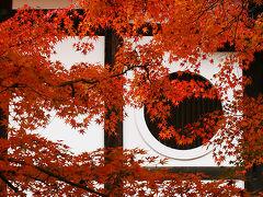 紅葉の京都を訪れる。。 臨済宗東福寺派大本山  東福寺の紅葉 /