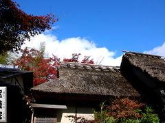 京都紅葉2008宝厳院へ