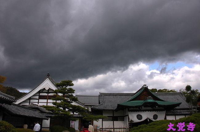 (2008紅葉-その7)大覚寺へ<br /> 岐阜から高速バスで京都へ乗り込んで<br />京都駅から市バス待つが...待てどもバス来ないので<br />タクシーで嵐せんで嵐山駅まで<br />少し周りを見渡せば.天龍寺へ..少し道草<br />すると..観光客の集団につられて歩き<br />宝厳院の良さを小耳に挟み.見れば外観から<br />素晴らしい景観で.暫し.たたずみ足は.自然に宝厳院の入口へ<br />■旅行名:京都紅葉2008宝厳院へ<br />■URL:http://4travel.jp/traveler/isazi/album/10291375/<br />次に..清涼寺を覗いて.大覚寺へ..大覚寺前で昼食後<br />今回の目的の大覚寺にて...<br />大覚寺は真言宗大覚寺派の本山です。<br />京都の人の案内で....<br />小雨が降り始め.始めての大覚寺を急いで回ったら<br />■旅行名:京都紅葉2008大覚寺へ<br />■URL:..........<br />少し時間が有るので..直指庵へ<br />■旅行名: 京都紅葉 2008 直指庵へ<br />■URL: http://4travel.jp/traveler/isazi/album/10291756/<br />時間は,十分余裕で大覚寺前の市バスに2時15分頃<br />30分待たされて...嵐山経由だから<br />京都駅からの高速バスが午後4時に乗れるのが<br />午後5時のに乗って..時代祭と同様に<br />京都は..混雑して..雨に降られて..たいへんどすな・ <br />しかし,帰りには市バスから綺麗な虹を見ました,